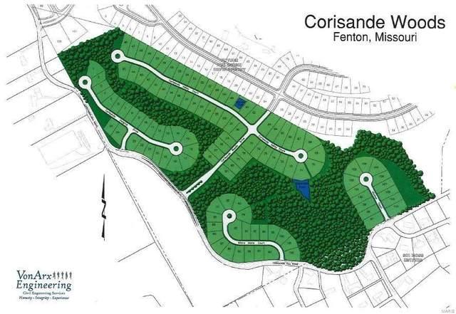 615 Corisande Hill Road, Fenton, MO 63026 (#21042460) :: Peter Lu Team