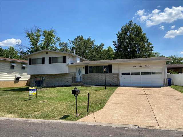 4100 Southern Aire, St Louis, MO 63125 (#21042605) :: Realty Executives, Fort Leonard Wood LLC