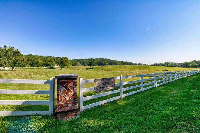 945 Wild Horse Creek Road, Wildwood, MO 63005 (#21043006) :: Friend Real Estate