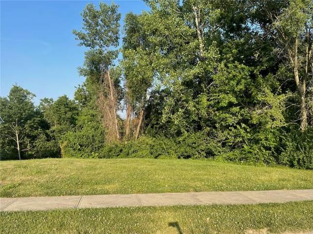 173 Pine Hollow Lane, Collinsville, IL 62234 (#21043073) :: Hartmann Realtors Inc.