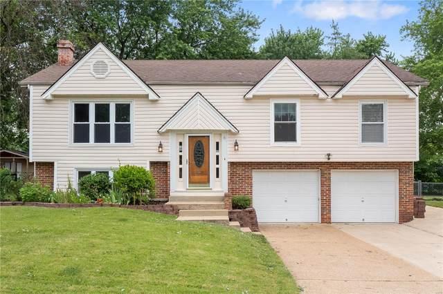 14 Debbie Drive, Saint Peters, MO 63376 (#21043435) :: Kelly Hager Group | TdD Premier Real Estate