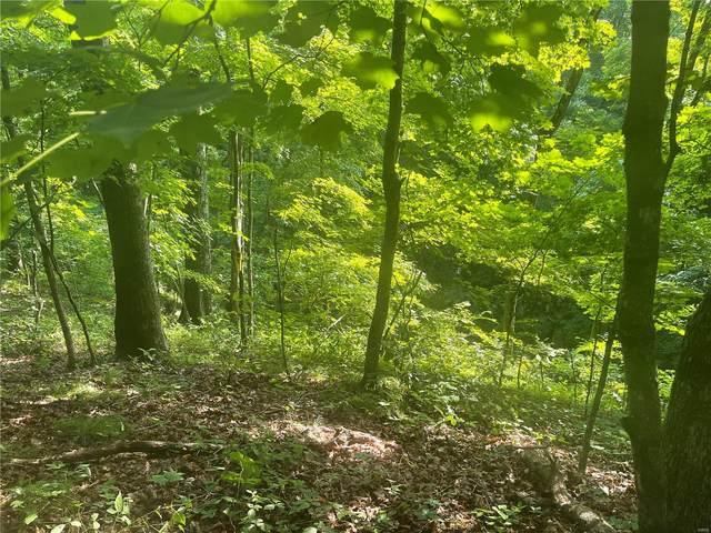 5 Tall Oak Trail, Warrenton, MO 63383 (#21043936) :: Delhougne Realty Group