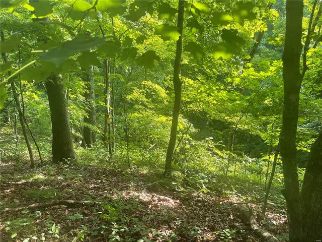 5 Tall Oak Trail, Warrenton, MO 63383 (#21043936) :: Reconnect Real Estate