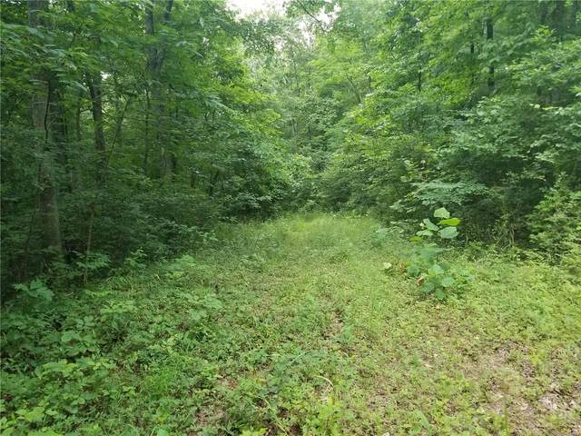 0 County Road 500, Marble Hill, MO 63764 (#21043982) :: RE/MAX Vision
