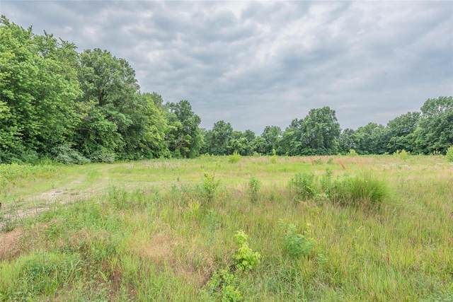 0 State Route 162, Troy, IL 62294 (#21044462) :: Fusion Realty, LLC