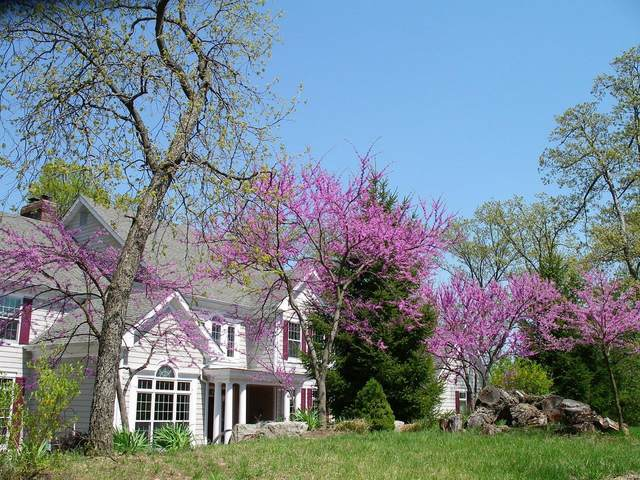 17337 Hidden Valley Lane, Wildwood, MO 63025 (#21045098) :: St. Louis Finest Homes Realty Group