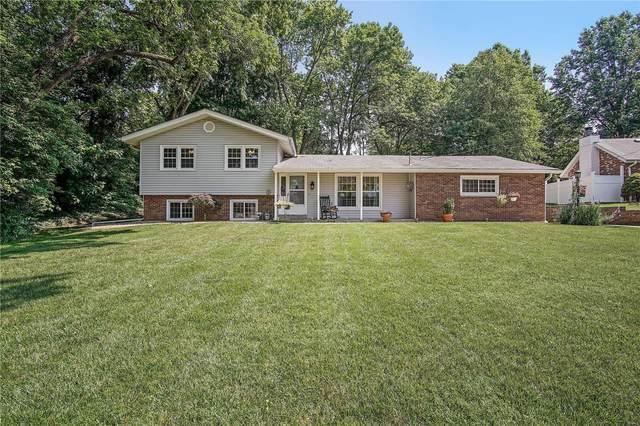 568 E Lake Drive, Edwardsville, IL 62025 (#21045518) :: Blasingame Group | Keller Williams Marquee