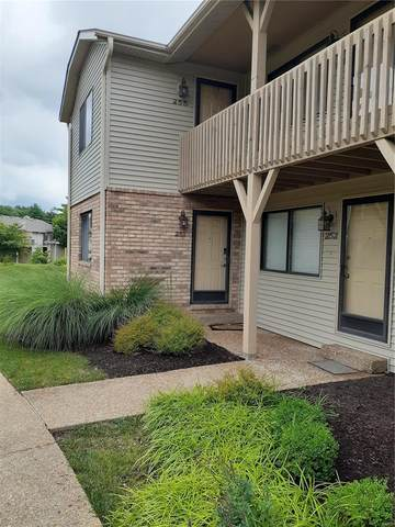 251 Eagle Ridge, O'Fallon, IL 62269 (#21046433) :: Mid Rivers Homes