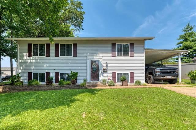 204 Lookout Avenue, Valley Park, MO 63088 (#21047542) :: PalmerHouse Properties LLC