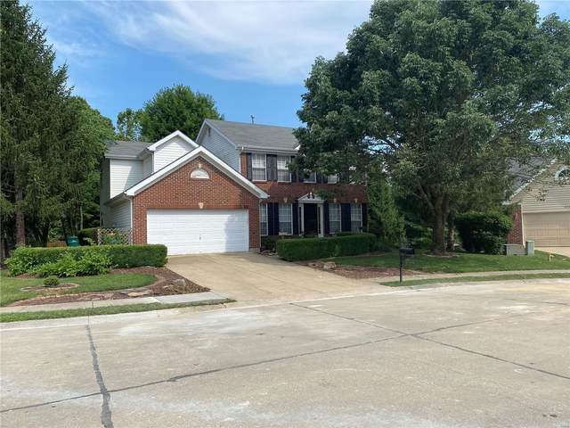 437 Deer Creek Road, O'Fallon, IL 62269 (#21048093) :: St. Louis Finest Homes Realty Group