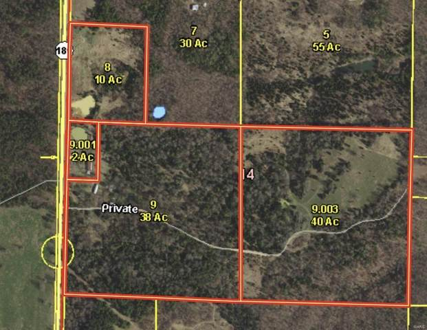 0 State Hwy 181, Willow Springs, MO 65793 (#21048102) :: Krista Hartmann Home Team