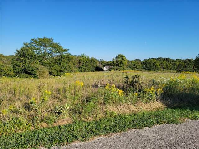 150 Ethan Drive, Elsberry, MO 63343 (#21048242) :: Jeremy Schneider Real Estate