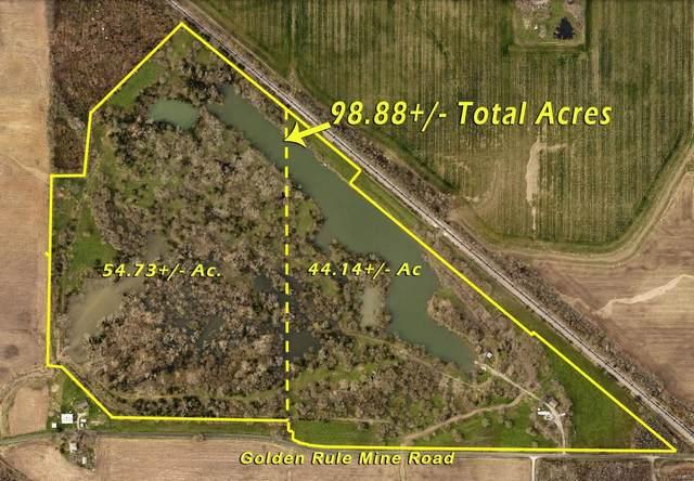 9309 Golden Rule Mine Road, LENZBURG, IL 62255 (#21049422) :: Parson Realty Group