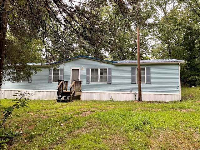 475 Cedar View Drive, Lonedell, MO 63060 (#21050300) :: RE/MAX Professional Realty
