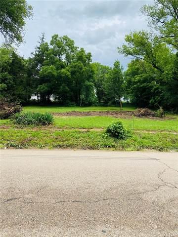 314 Valley Place, De Soto, MO 63020 (#21051014) :: Palmer House Realty LLC