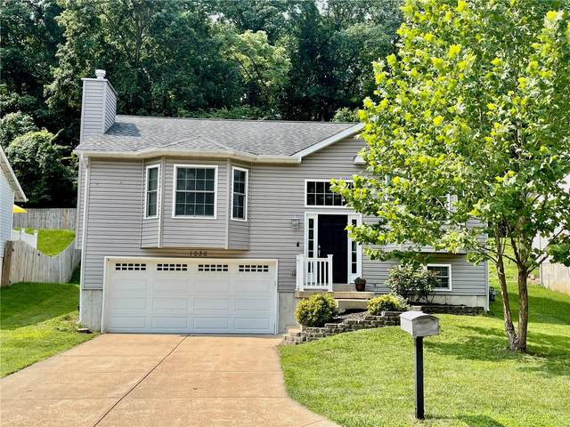 1036 Fenton Park Drive, Fenton, MO 63026 (#21051021) :: PalmerHouse Properties LLC