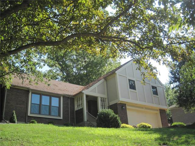 4 Woodland Trail, Hannibal, MO 63401 (#21051025) :: Parson Realty Group