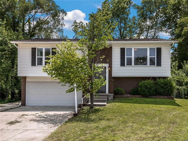 120 Wood Court, Collinsville, IL 62234 (#21052259) :: Clarity Street Realty