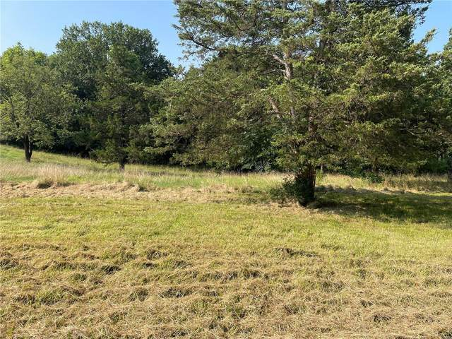 0 Lot 2 Indian Trail, Pacific, MO 63069 (#21052388) :: RE/MAX Vision