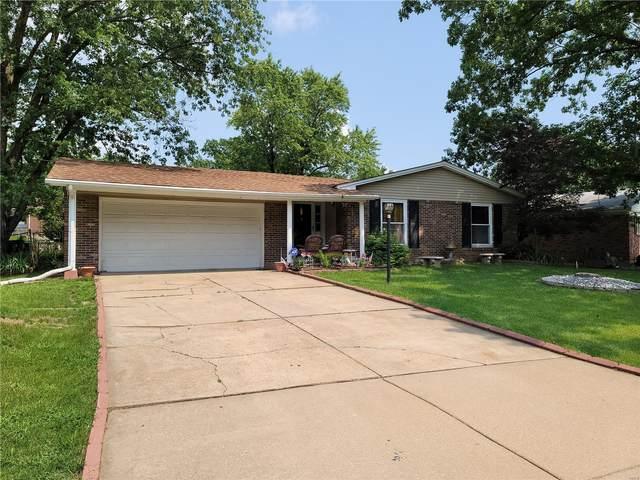 1733 Parktree Lane, St Louis, MO 63138 (#21052578) :: Parson Realty Group