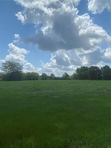 11526 Wagon Wheel Trail, Warrenton, MO 63383 (#21052738) :: Parson Realty Group