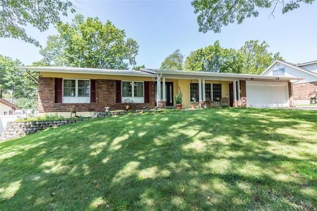 2851 Springridge Drive, St Louis, MO 63129 (#21052759) :: RE/MAX Vision