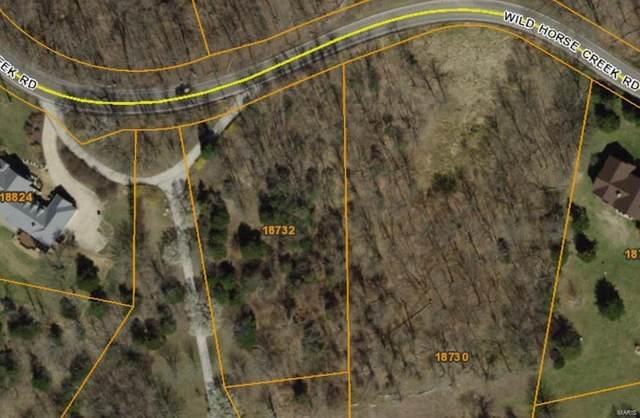 18732 Wild Horse Creek, Wildwood, MO 63005 (#21053158) :: Krista Hartmann Home Team