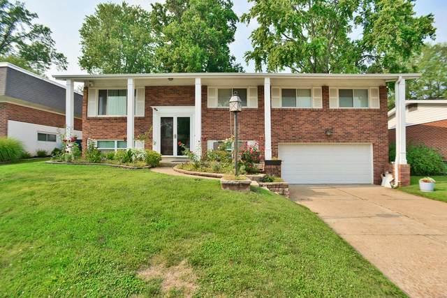 10553 Copperfield Drive, St Louis, MO 63123 (#21053967) :: Century 21 Advantage