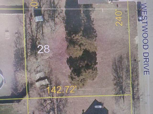 28 Westwood Drive, Salem, MO 65560 (#21054063) :: Friend Real Estate