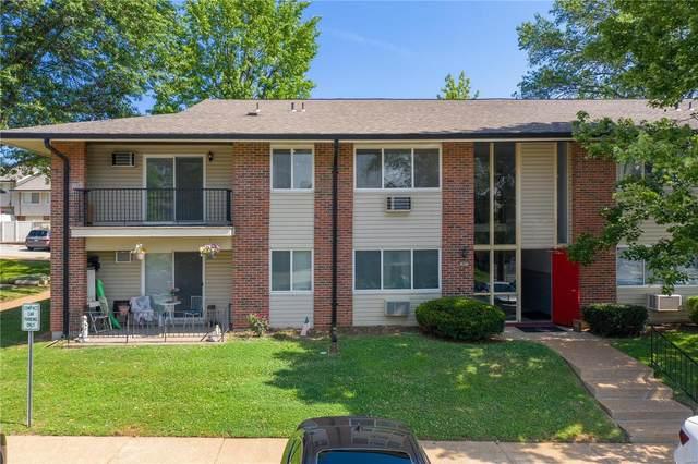 10037 Echoridge Lane E, St Louis, MO 63123 (#21054313) :: Terry Gannon   Re/Max Results
