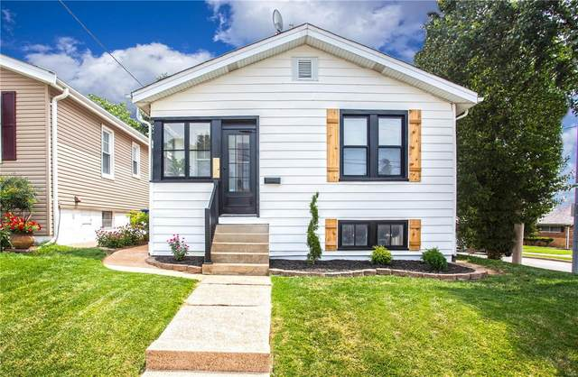7332 Eugene Avenue, St Louis, MO 63116 (#21054551) :: Terry Gannon | Re/Max Results