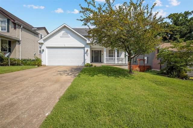 593 Ridge Avenue, St Louis, MO 63119 (#21054805) :: Walker Real Estate Team