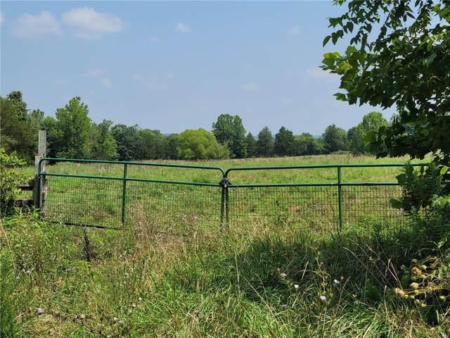 3528 Highway, Fredericktown, MO 63645 (#21055283) :: Realty Executives, Fort Leonard Wood LLC