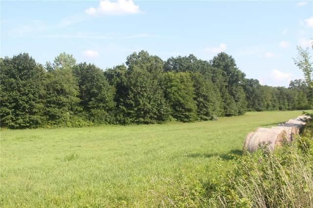 10 Bentwood, Silex, MO 63377 (#21056135) :: Jenna Davis Homes LLC