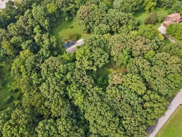 305 Forest Acres Drive, O'Fallon, MO 63366 (#21057568) :: Krista Hartmann Home Team