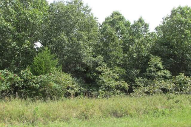10135 Kelemen Farms West, Dittmer, MO 63023 (#21059951) :: Elevate Realty LLC