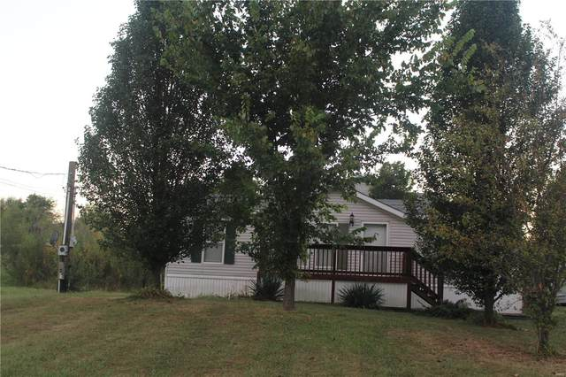 233 S Henderson, Park Hills, MO 63601 (#21060974) :: Krista Hartmann Home Team