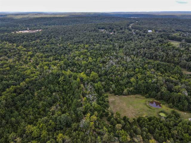 0 +/- 39 Acres Hwy Aw/Walnut Rd, Plato, MO 65552 (#21062120) :: RE/MAX Professional Realty