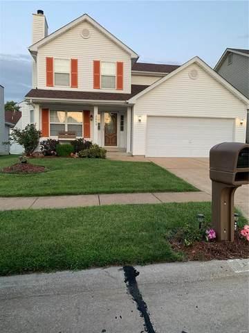 2848 Dolfield Drive, Florissant, MO 63031 (#21062293) :: Clarity Street Realty
