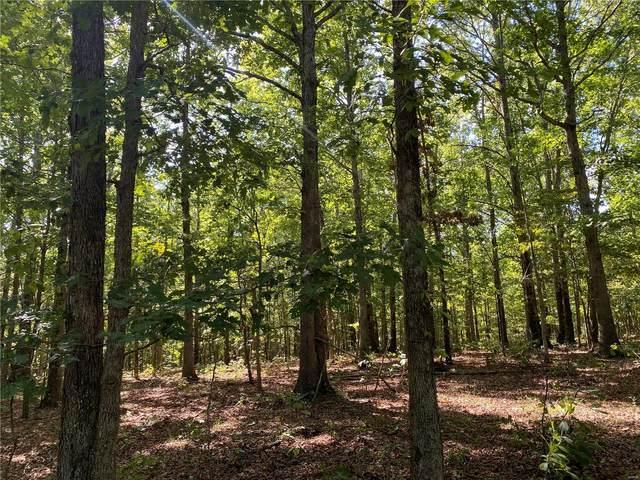 0 Lakeview Trail, Raymondville, MO 65555 (#21062603) :: Delhougne Realty Group
