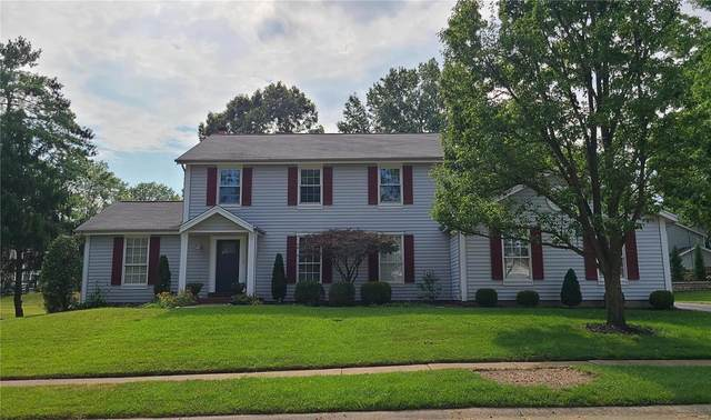 16242 Windfall Ridge Drive, Chesterfield, MO 63005 (#21062619) :: Kelly Hager Group | TdD Premier Real Estate