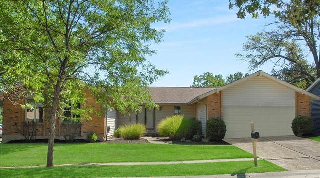15596 Summer Lake Drive, Chesterfield, MO 63017 (#21063402) :: Blasingame Group | Keller Williams Marquee