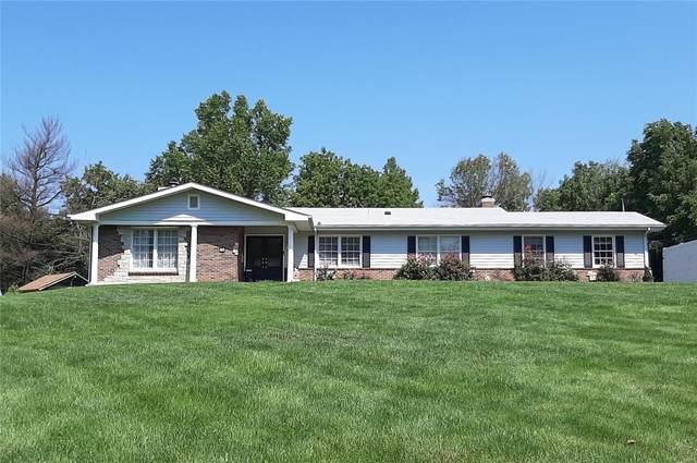 36 Beacon Hill Lane, St Louis, MO 63141 (#21064161) :: Krista Hartmann Home Team