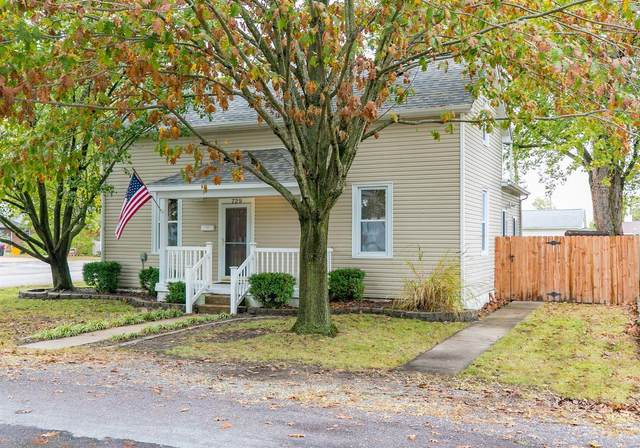 729 W Elm Street, Millstadt, IL 62260 (#21064293) :: Reconnect Real Estate