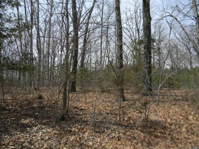 0 Cypress Leaf, Blk 4, Lot 64 Drive, New Haven, MO 63068 (#21065409) :: Hartmann Realtors Inc.