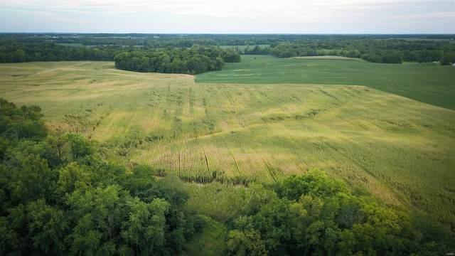 5100 Blaise Lane, Belleville, IL 62220 (#21065751) :: Matt Smith Real Estate Group