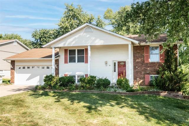 18 Vanguard Drive, Saint Peters, MO 63376 (#21065871) :: Jenna Davis Homes LLC