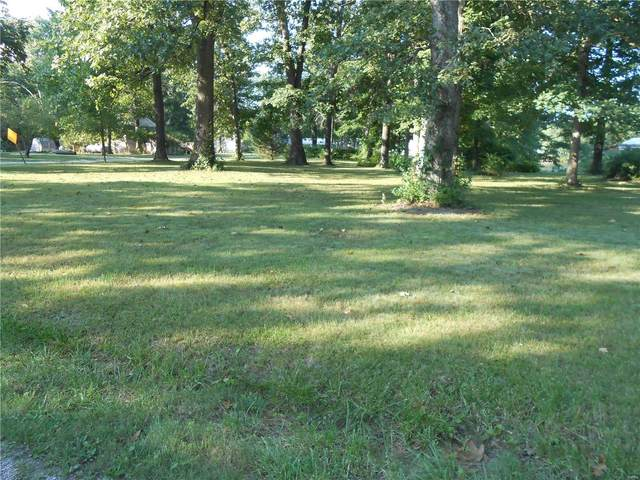 0 Woodland Drive, MOUNT OLIVE, IL 62069 (#21066041) :: Mid Rivers Homes