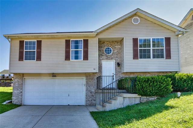 50 Harbor Pointe Court, Crystal City, MO 63019 (#21066321) :: Parson Realty Group