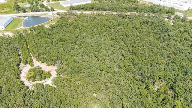 0 9.23 +/- Acres State Route V, Rolla, MO 65401 (#21066349) :: Blasingame Group | Keller Williams Marquee